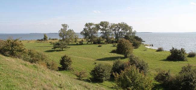 Ausflugsziel im Usedom-Kurzurlaub: Halbinsel Gnitz