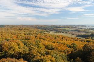 Im Herbst ein Last Minute Ostsee-Kurzurlaub buchen...