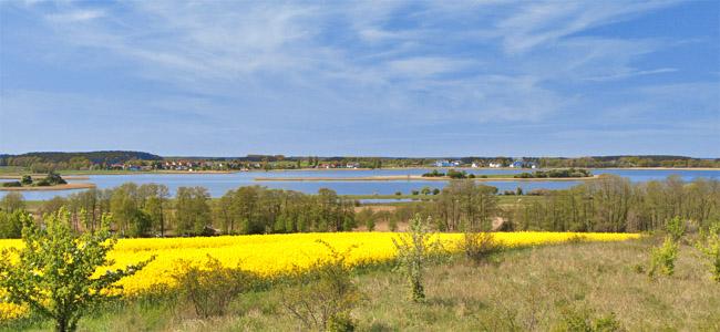 Usedomer Achterland
